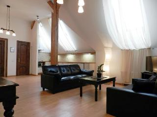 Cozy 1 bedroom apartment in a Riga Center - Riga vacation rentals