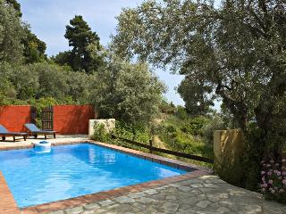 Private pool villa ideal for a private get-away!, Skopelos