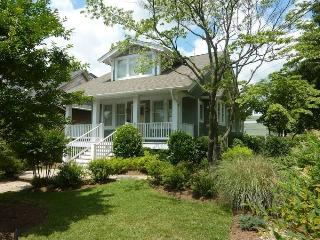 Charming Chesapeake--in Eastport, Annapolis - Annapolis vacation rentals