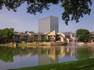 2 Bdrm Dallas Apartment for Dickey's Training! - Dallas vacation rentals