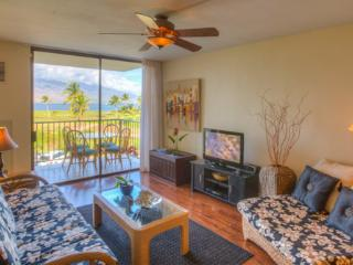 Summer Special May to Aug $110.00 (6nt) Beautiful  Beachfront Condo, Huge View, Kihei
