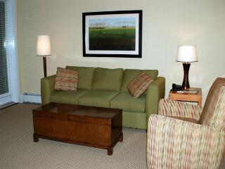Cozy and comfortable 1 bedroom ski in ski out condo with a full kitchen!!!, Winter Park