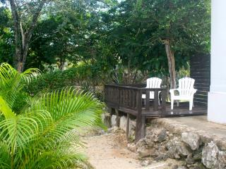 New AKUMAL King Jungle Apt w KITCHEN, AIRCO & WIFI, Akumal