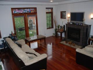 West Town Condo 2-bedroom and 2-fullbath condo unit (Unit 2) with 1 assigned parking - Illinois vacation rentals