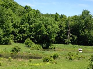 17 acre Hudson Valley mini farm, Rhinebeck area, Pine Plains