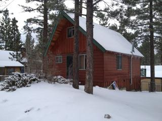 Cozy Cabin By The Lake, Family And Pet Friendly, Big Bear Region