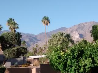 Beautiful Palm Springs