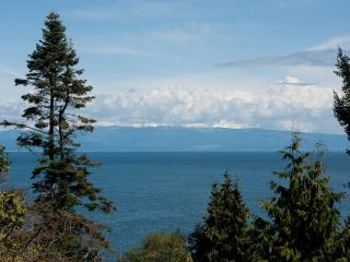 OCEANVIEW SUITE WITH JACUZZI - BREE'S BY THE SEA, Nanoose Bay