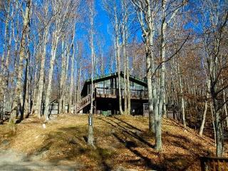 Black Bear Chalet, Beech Mountain