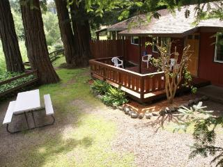 2 bedroom cabin in the redwoods with fireplace, Felton