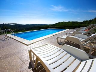 Villa with an amazing view and location - Motovun vacation rentals