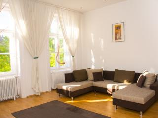 3 bdr comfy apartment w 2 bathrooms and free WIFI - Budapest vacation rentals
