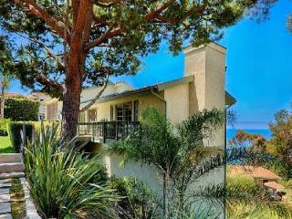 Newly remodeled Laguna Beach House offers ocean views, wraparound deck & parking