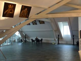 Huge Loft in 15th C. Town Centre, Blois