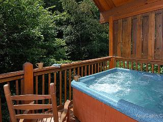 A Bear's Lair Cabin - Tennessee vacation rentals