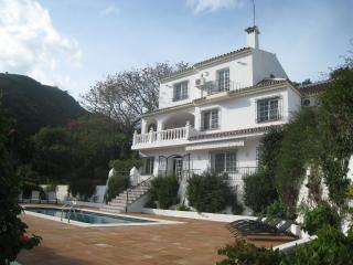 Lovely spacious villa with large 4x8m private pool, Estepona