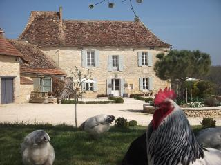 The Manoir at Rigal set in 100 acres,heated pool, Bergerac