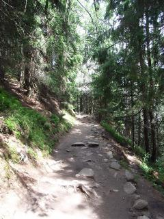 Typical mountain path - signed and not too steep