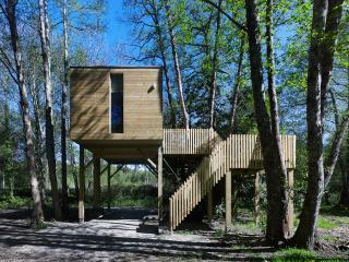 Forest cabins, Outes