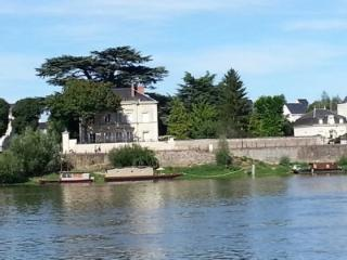 LOIRE ELGANCE  AMAZING VIEW   DIFFERENT HOLIDAYS, Allonnes