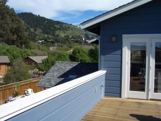 Steps from and Views of Beach, Ocean and Mountains - Stinson Beach vacation rentals