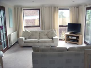 Comfortable Living Room with with sky & plasma TV