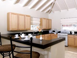 Modern, generous well equipped kitchen for the Man to cook in!!
