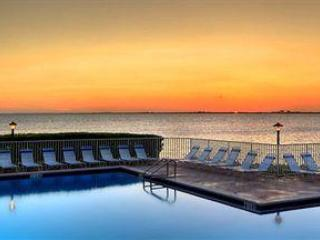 Direct view of the swiming pool and the Bay from the unit - On Tampa Bay waters,3 miles from Tampa Int Airport - Tampa - rentals