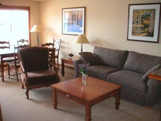 1BR Ski in/Out Slope & Village Views in Powderhorn, Solitude