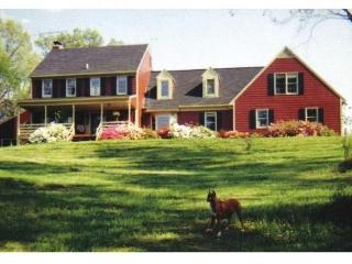 6 BR. Hidden Hollow Country Estate near Wash.D.C. - Warrenton vacation rentals