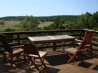 Abutting River & Nat'l Seashore Privacy,Internet, Wellfleet