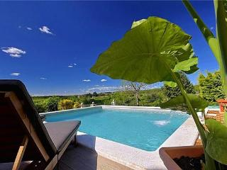 46477-Holiday house Porec, Visnjan