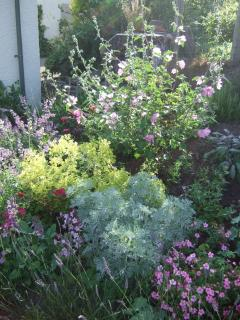 Strictly for the Bees - Summer visitors get the benefit