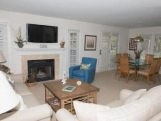257 Evian Villa - Hilton Head vacation rentals