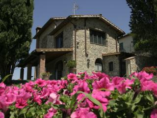 Beautiful Tuscan 3 bedroom barnhouse with picturesque garden and deck, located in the heart of Chianti Classico, Greve in Chianti