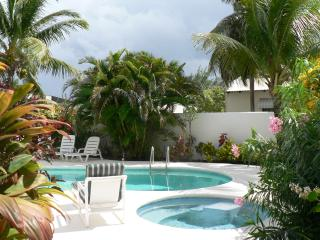 luxury villa near The Crane - Saint Philip vacation rentals