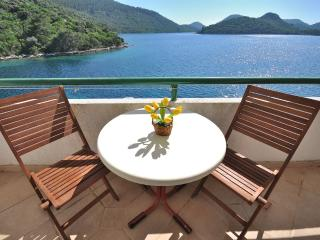 Apartments Tonka - 53911-A1 - Island Lastovo vacation rentals