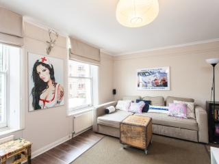 Spacious Central London Getaway with Terrace Wifi, Londen