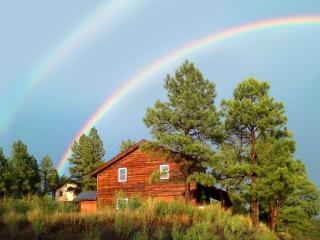 Split Pine Cabin: Privacy & Serenity, Pagosa Springs
