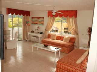 Exotic gateway to Ocho Rios..spacious modern condo