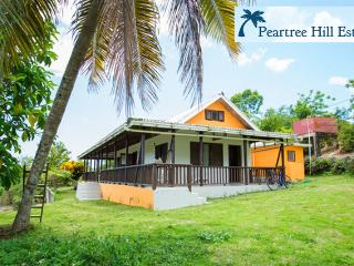 Private Home on 2 Fruited Acres w/ Beautiful Views, Negril
