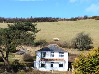 Hill Green, Woolacombe