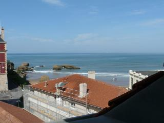 Apartment with terrace - Basque Country vacation rentals
