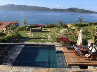 fantastic sea view villa with garden and private pool walking distance to Bodrum town - Bodrum Peninsula vacation rentals