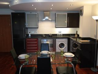 Oasis Apartment Two Bedroom at Canary Wharf, London