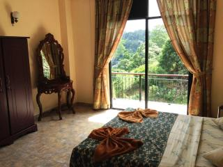 4-bed Apartment Kandy with views 1.5km from town! - Sri Lanka vacation rentals