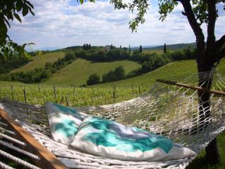 Exclusive and reserved in Chianti - Quercia, Gaiole in Chianti