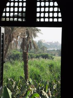 View from first floor bedfroom over banana plantation