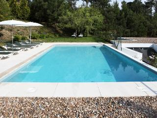 Douro Villa - Northern Portugal vacation rentals