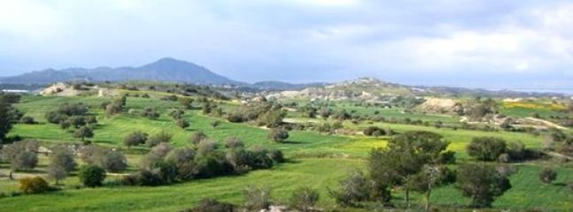 Mazotos countryside